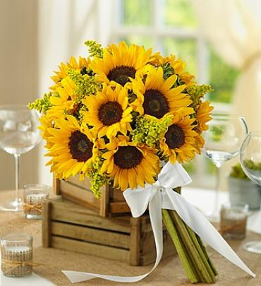 Country Wedding All Sunflower Bouquet