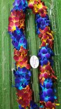 Blue and sunset orchid Lei
