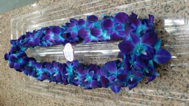 Blue Orchid Lei