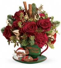 Teleflora\'s Send a Hug Night Before Christmas DX