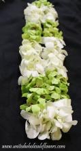 Double green and white orchid lei