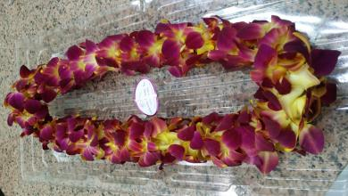 Sunset orchid lei