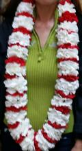 Red and White carnation lei
